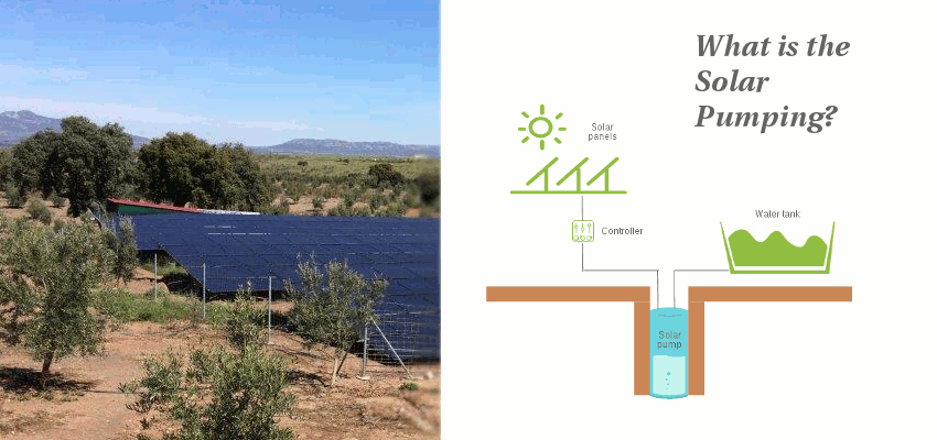 [Infographic] What is the Solar Pumping